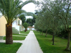 Gallery, Home, Amari Hotel, Chalkidiki, Metamorfosi, hotels, rooms, apartments, vacations, beaches